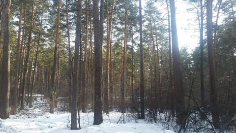 Продажа квартиры, Мочище, Новосибирский район, Дом отдыха Мочище мкр - Фото 2