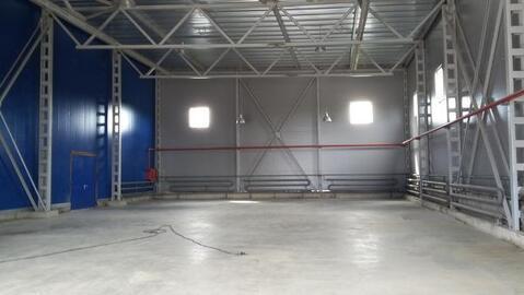 Сдается склад 464.5 м2 в Мурино - Фото 2