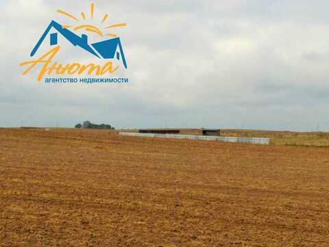 Участок 4 га в деревне Федорино для сельскохозяйственного производства - Фото 3