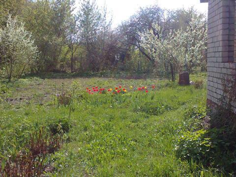 Продам дачу в Рязани, с/т Весна - Фото 4
