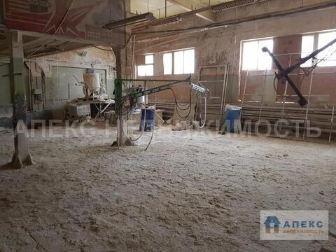 Аренда помещения пл. 802 м2 под производство, склад, Быково . - Фото 1