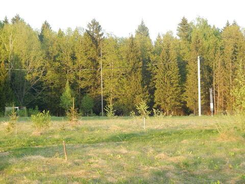 Участок 20 соток в п. Дорохово около леса - Фото 5