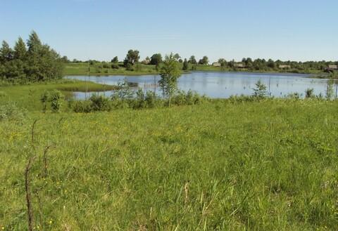 Продажа земельного участка в Маревском районе, Малое Демкино ИЖС - Фото 1