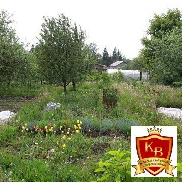 Продам зем.участок в г.Смоленске №244 - Фото 1