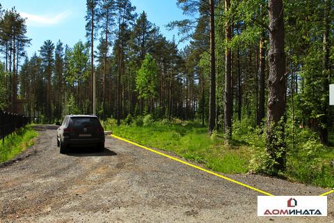 Респектабельный участок 9 соток в п.Кузьмоловский - Фото 4