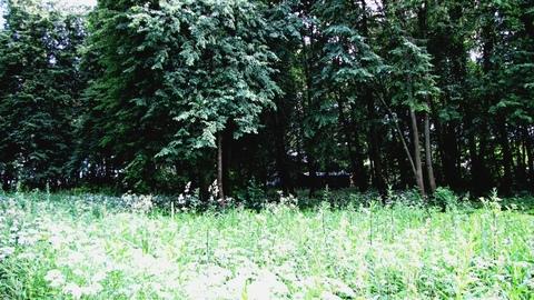 15 соток около с. Татариново Ступинского района - Фото 5