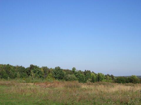 Продаю земельный участок в д. Желудёвка Тульской области - Фото 4