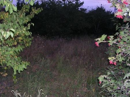 Продажа земельного участка, Пятигорск, Цветочная ул. - Фото 3