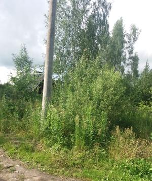 Садовый участок рядом с Дубной - Фото 2