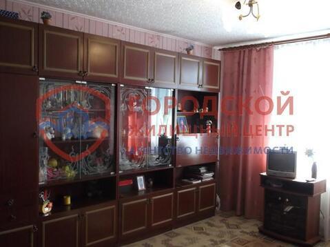 Продам 1-ю кв-ру в с. Криводановка - Фото 5