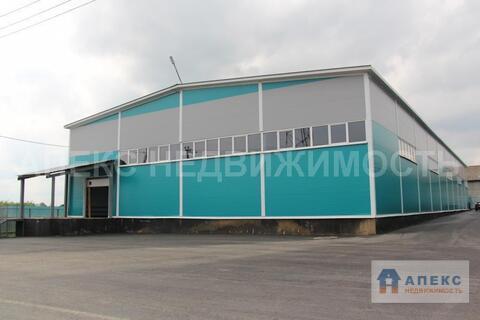 Аренда помещения пл. 900 м2 под склад, производство, , офис и склад . - Фото 2