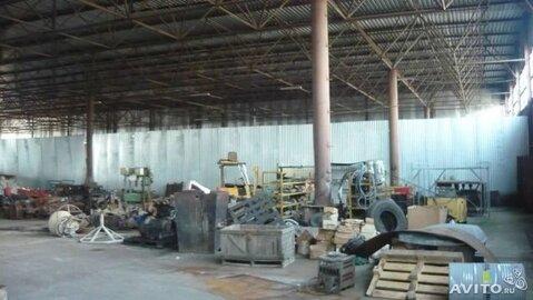 Под склад, сто 4000 м2, 100 квт, канализ - Фото 3