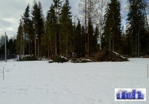 Участок 8 соток ИЖС в д. Алексеевское - Фото 1