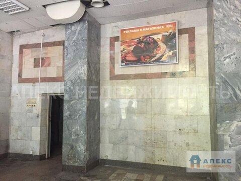 Продажа помещения свободного назначения (псн) пл. 305 м2 м. Кунцевская . - Фото 3