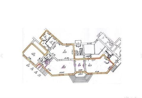 Продам торговое помещение 315 кв.м, м. Московская - Фото 3