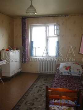 Продажа квартиры, Приозерск, Приозерский район, Ул. Гоголя - Фото 5