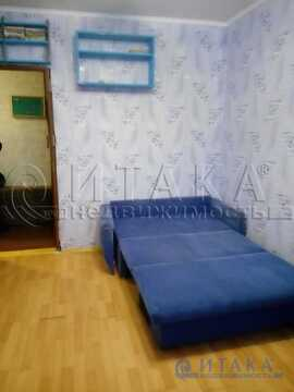 Аренда комнаты, м. Проспект Ветеранов, Красносельское ш - Фото 1