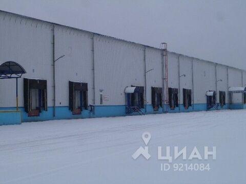 Аренда производственного помещения, Малые Вяземы, Одинцовский район, . - Фото 2