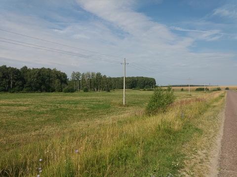 Продается участок сельхозназначения у д. Иванчиково Зарайского р-на МО - Фото 2