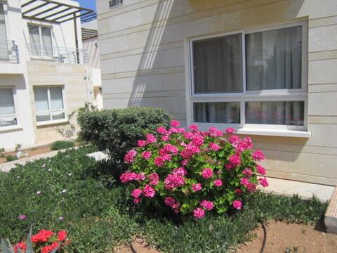 Аренда апартаментов от собственника - Фото 3