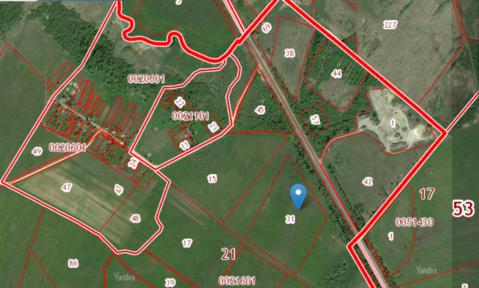 Купить земельный участок в деревне Заполье, Шимский - Фото 2