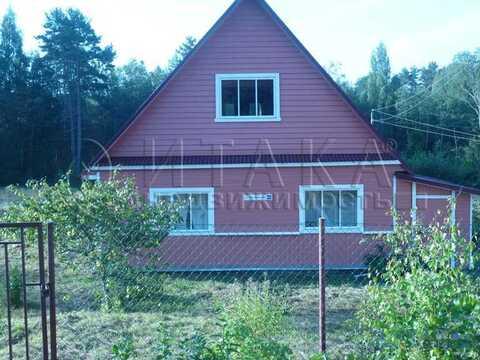 Продажа дома, Ляды, Плюсский район - Фото 3