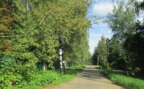 29 соток хвойного леса для постоянного проживания . Закрытый поселок в - Фото 2