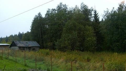 Продам дом в п.Кузнечное(Приозерский р-н) - Фото 1