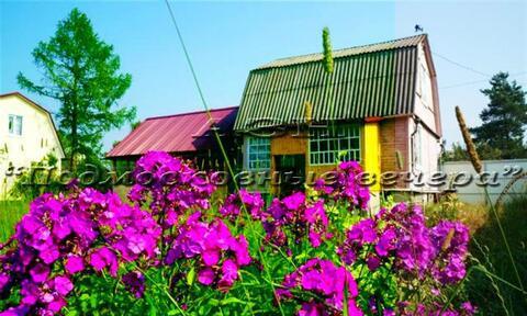 Горьковское ш. 62 км от МКАД, Васютино, Дача 70 кв. м - Фото 3