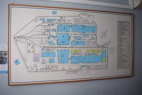Аренда помещения под производство 3800 м2, Сходня - Фото 2