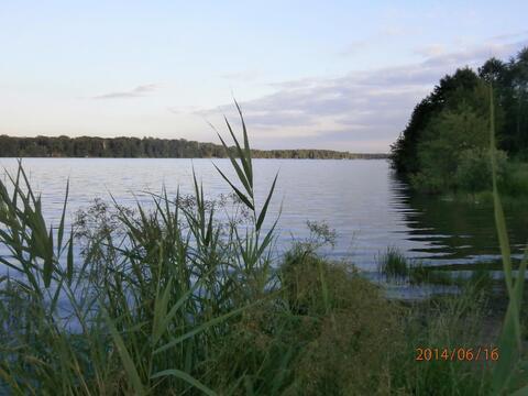 Участок 15 сот. , Горьковское ш, 20 км. от МКАД. - Фото 4