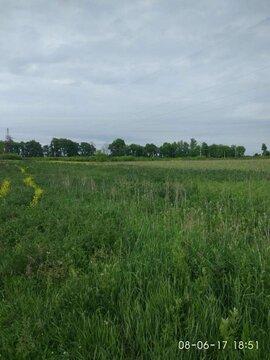 Продажа: земельный участок 1100 соток - Фото 4