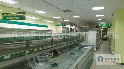 Продажа магазина пл. 850 м2 м. вднх в жилом доме в Алексеевский - Фото 2