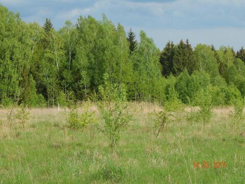 """Участок в экологически чистом коттеджном поселке """"телеши-1"""" - Фото 3"""