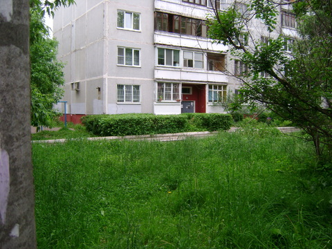 2 350 000 Руб., 2 комнатная квартира с изолированными комнатами в тихом дворе, Купить квартиру в Твери по недорогой цене, ID объекта - 320566459 - Фото 1