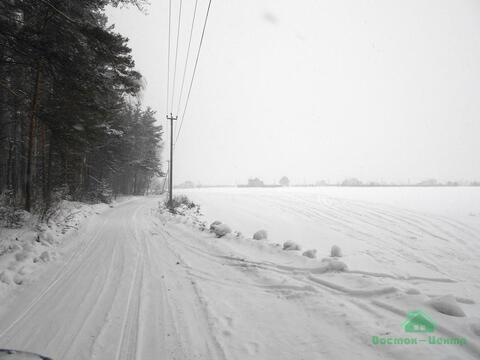 10 сот в ДНП Лесное - 85 км Щелковское шоссе - Фото 4