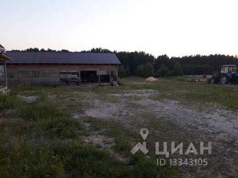 Продажа офиса, Ковровский район, Улица Лесная - Фото 1