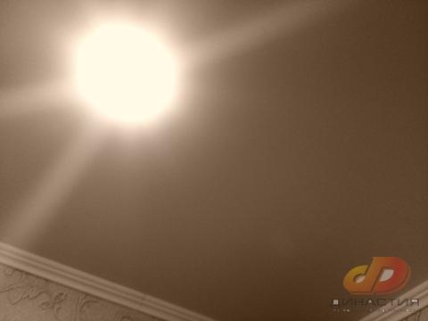 Трёхкомнатная квартира, кирпичный дом, ул.Тухачевского/50 лет влксм - Фото 4