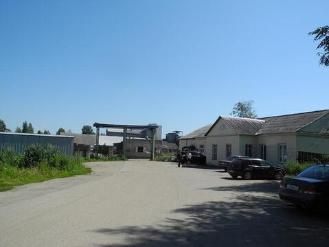 Завод по производству комбикормов - Фото 5