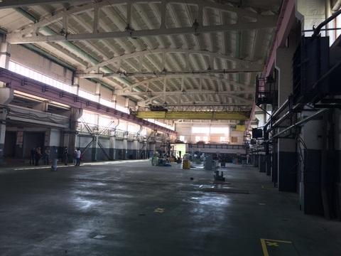 Сдам производственное помещение 2800 кв.м. - Фото 3