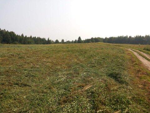 Продам: земля 520 соток, деревня Ростовка - Фото 4