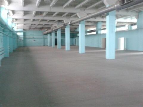 Сдам складское помещение 1850 кв.м, м. Ломоносовская - Фото 3
