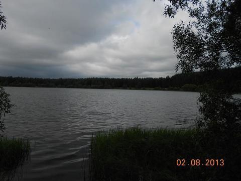 Участок на берегу озера в д.Озерье, Клепиковского района. - Фото 3