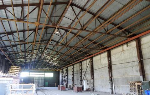 Сдам производственный комплекс 3331 кв.м. - Фото 3