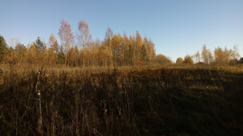 Продажа земельного участка в деревне Станки, Валдайского района - Фото 1
