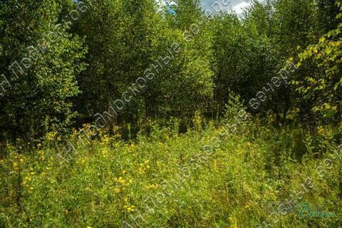 Калужское ш. 57 км от МКАД, Тюфанка, Участок 33.5 сот. - Фото 1
