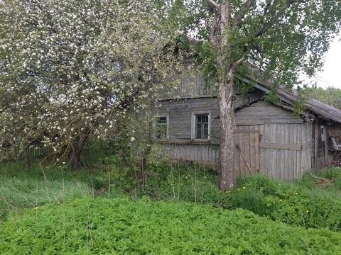 Продажа дома, Селихново, Пушкиногорский район - Фото 1