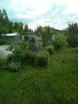 Дачный участок в СНТ Колос - Фото 2