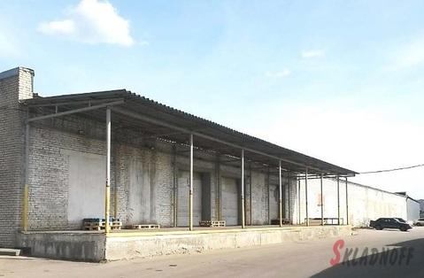 Продажа складского комплекса 5361м2, Новорязанское ш, 8 км от МКАД - Фото 5