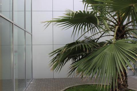 Гостиничный комплекс - Фото 1